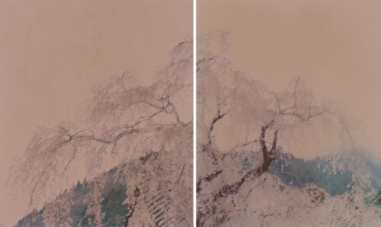 Ori Gersht Landscape Photograph - Against The Tide, Diptych Monks (Diptych)