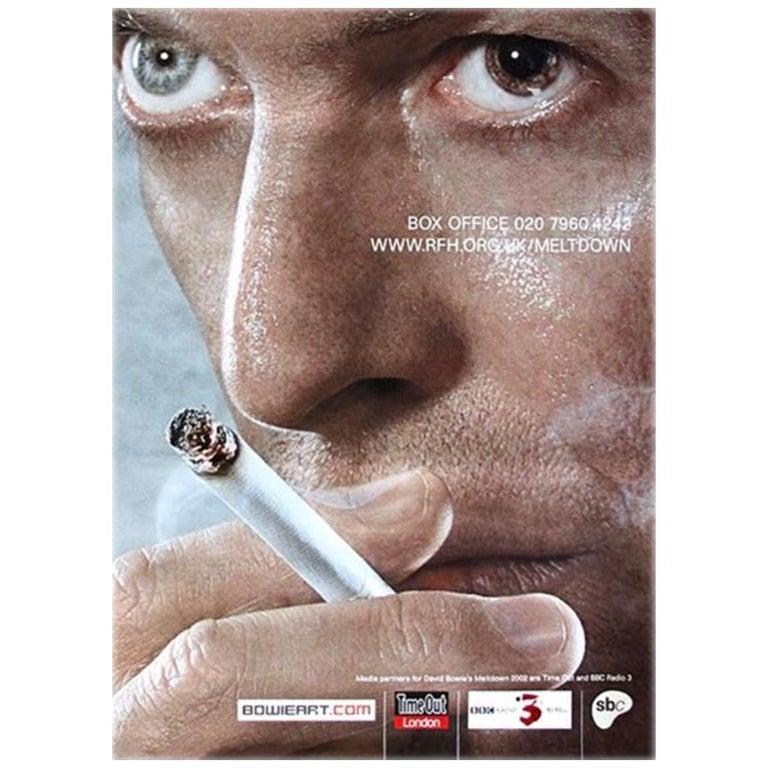 "Original ""Adshel"" Poster for David Bowie Meltdown Tour, 2002 For Sale"