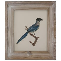 Original Antique Decoupage Print of a Bird, circa 1850