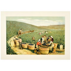 Original Antique J. Bollinger Champagne Poster Sparkling Wine Vineyard Ay France