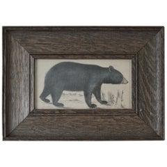 Original Antique Print of a Black Bear, 1847