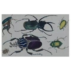 Original Antique Print of Beetles, 1847 'Unframed'