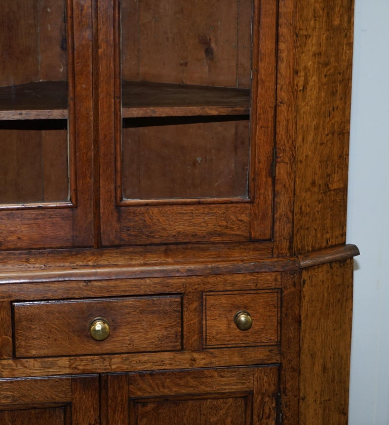 Original circa 1840 Victorian Honey Oak Corner Cupboard Bookcase Brass Handles For Sale 5