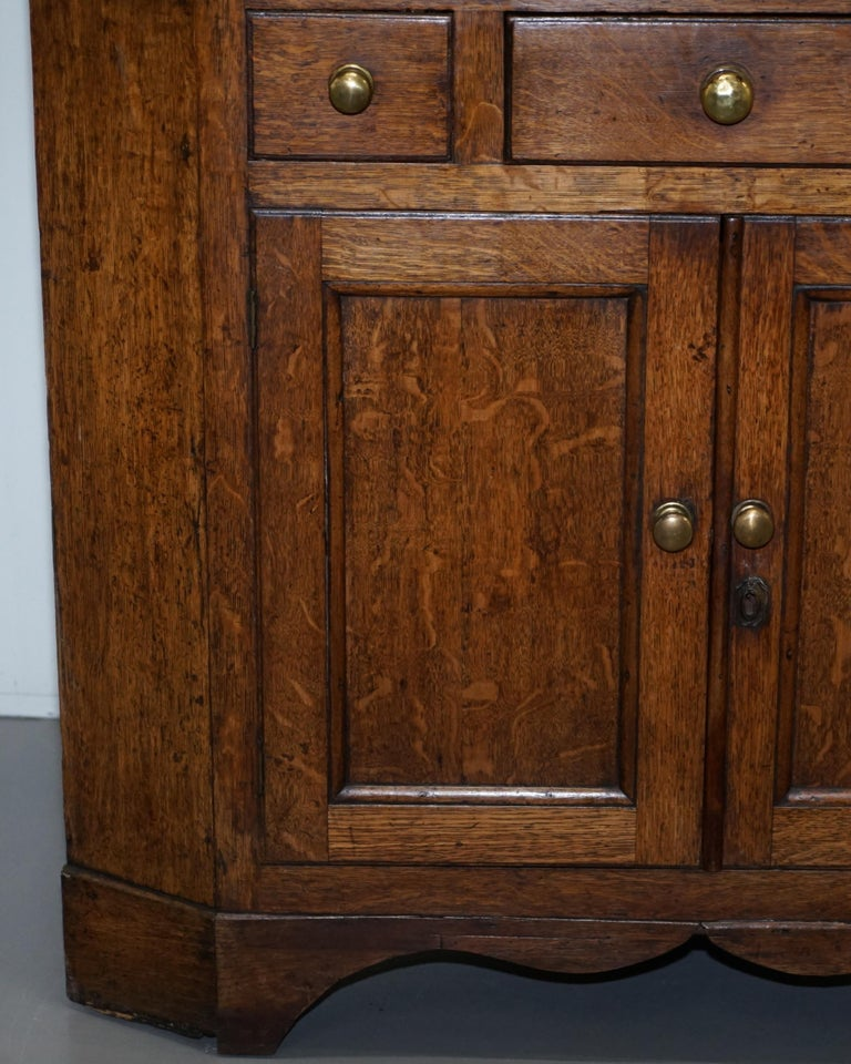 Mid-19th Century Original circa 1840 Victorian Honey Oak Corner Cupboard Bookcase Brass Handles For Sale