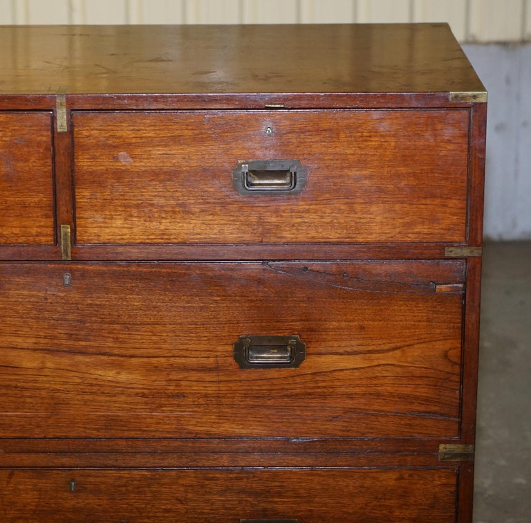 Original circa 1900 Army & Navy C.S.L Stamped Military Campaign Chest of Drawers For Sale 1