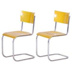 Original Condition Czech Bauhaus Yellow Pair of Chairs by Mart Stam, 1930s