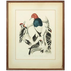 Original Hand-Colored Engraving of 'Woodpeckers' by Artist Alexander Wilson