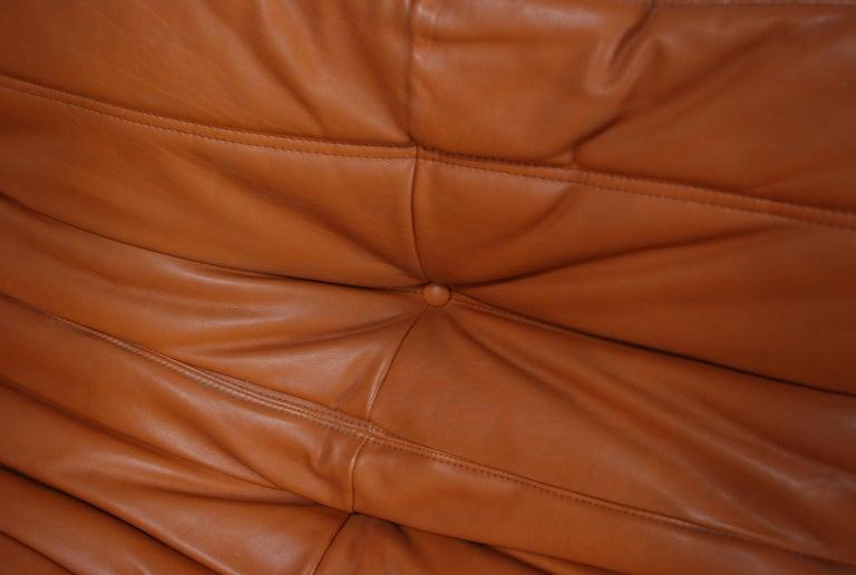 Original Ligne Roset Togo Cognac Brandy Aniline Leather Sofa 7