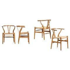 Original Set of 4 CH24 Chairs by Designer Hans Wegner Oak Danish Scandinavian