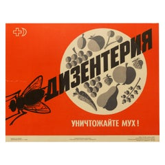 Original Vintage Poster Soviet USSR Health Food Propaganda Dysentery Flies Kill