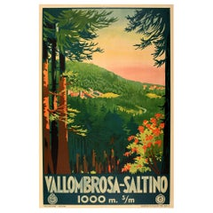 Original Vintage Poster Vallombrosa Saltino Tuscany Forest Railway Travel ENIT