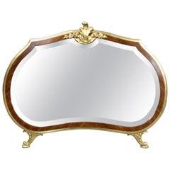 Ornate 19th Century French Ormolu Dressing Mirror