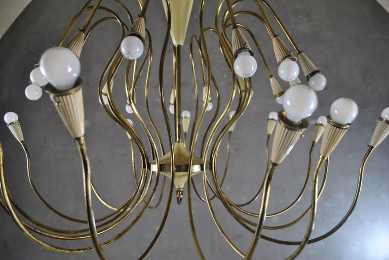 Oscar Torlasco Italian Midcentury Chandelier in Brass, 1950s For Sale 6