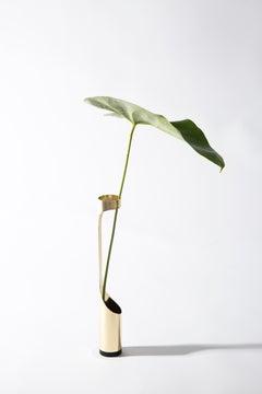 Oscar Vase by Decarvalho Atelier, Brazilian Contemporary Design