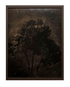 Nacht-Still life, contemporary black and white photo, flowers, rare