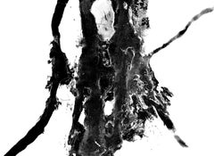 Untitled (Justinus Klecks), Rare abstract black and white gelatin silver print