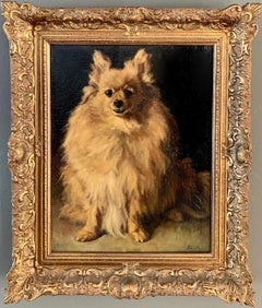 19th century European Portrait of a Pomeranian or Chihuahua- Life size Dog Genre