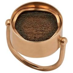 Ouroboros Petrified Wood Ring Set in 18 Karat Gold