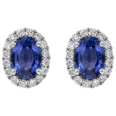 Oval Cut Blue Sapphire and Diamond Halo Stud Earrings