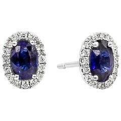 Roman Malakov, Oval Cut Blue Sapphire and Diamond Halo Stud Earrings