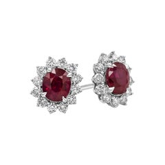 Oval Cut Ruby and Diamond Halo Stud Earrings