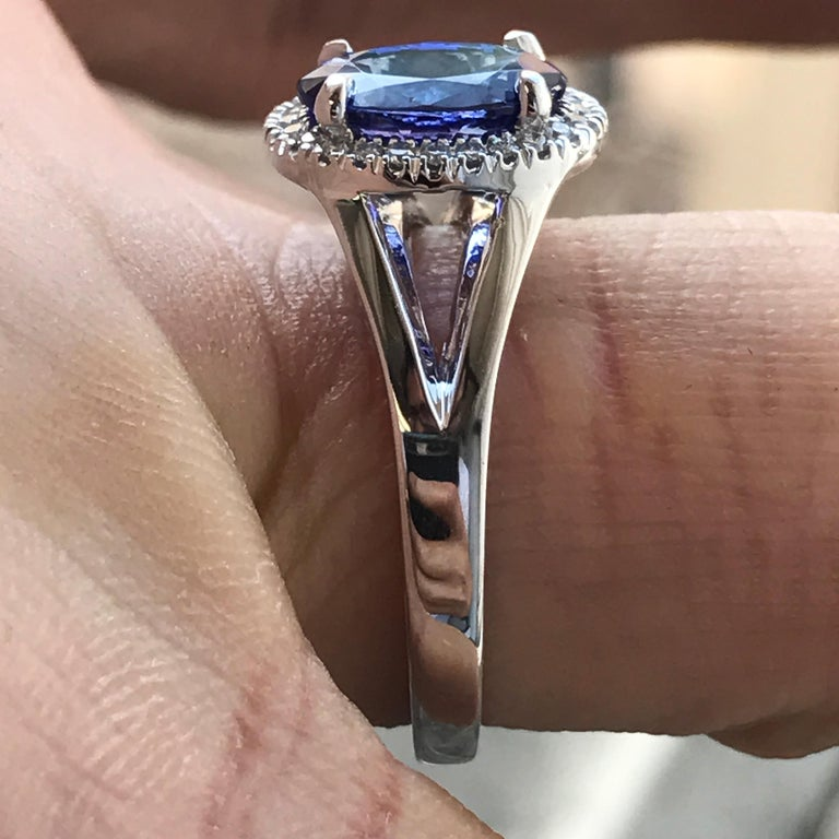 Oval Cut Oval Violet Tanzanite with Diamond Engagement Halo Ring, 18 Karat White Gold For Sale