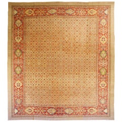 Oversize Antique Persian Sultanabad Rug with White and Pink Floral Details