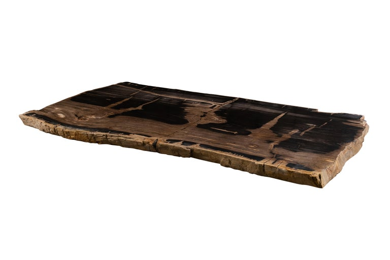 Carved Oversized Live Edge Single Slab Petrified Wood Table Top  For Sale