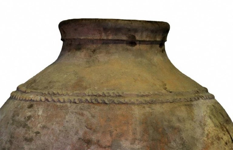 A very large Portuguese terracotta olive jar with corded frieze decoration, late 18th century. This wonderful piece can be used as garden ornament or planter, for indoor and outdoor use. Dimensions: Height 51 in / diameter 32 in (130 cm x 82 cm).