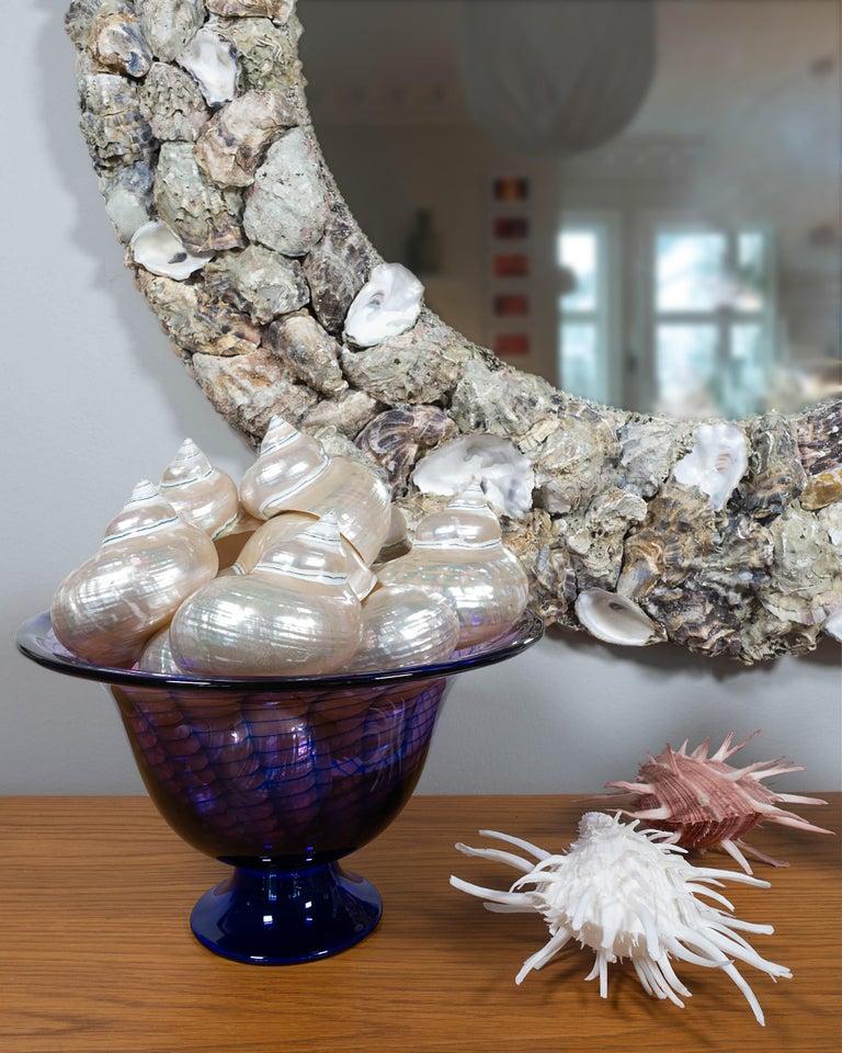 Swedish Oyster Bonanza, Unique Shell Mirror by Shellman Scandinavia, Sweden For Sale