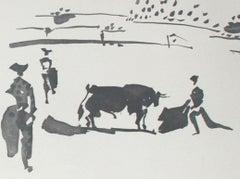 Citando al Toro con la Capa (Summoning the Bull with the Cape)