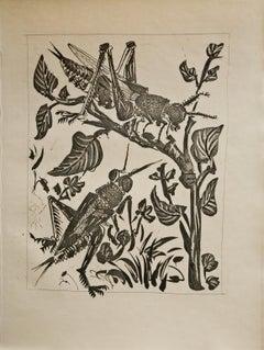 Le Sauterelle (The Grasshopper) Bloch 358
