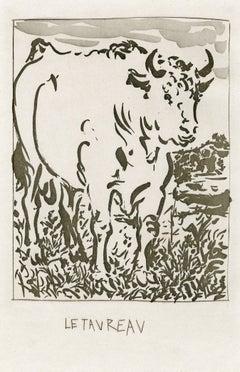 Le Taureau (le boeuf)-The Bull