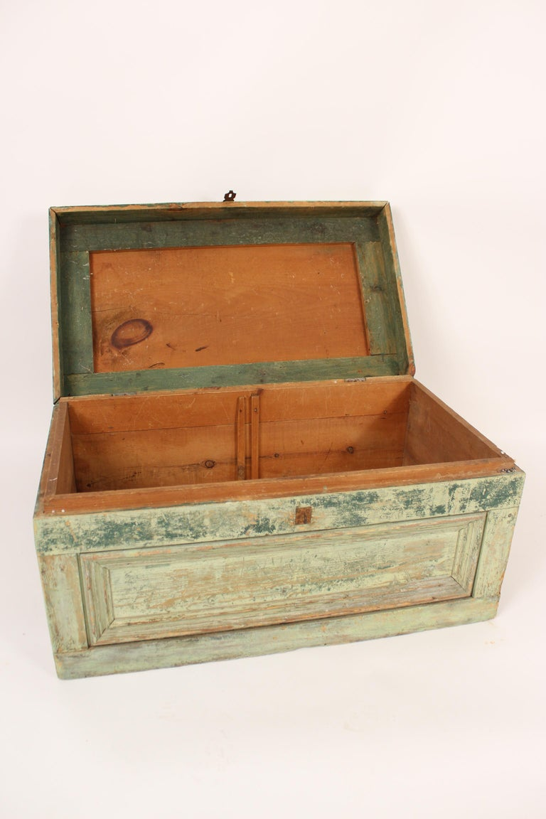 Painted Country Trunk For Sale 6