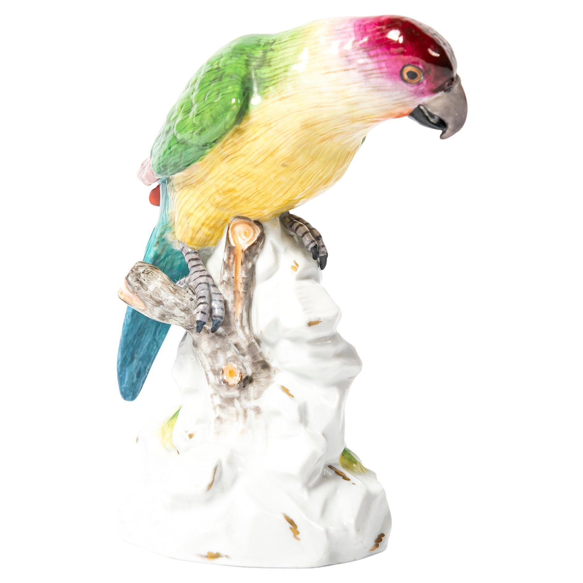 Painted Porcelain Parrot by Volkstedt, Germany, Early 20th Century
