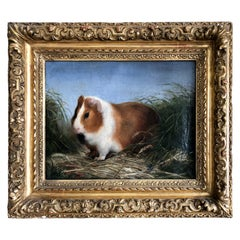 Painting of Guinea Pig, in a Rare Giltwood Frame, 19th Century, French