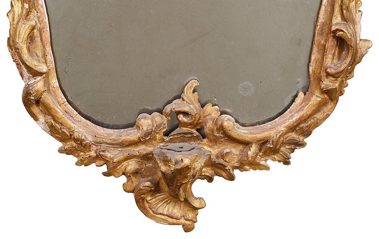 18th Century and Earlier Pair of 18th Century Italian Carved Giltwood Mirrors For Sale