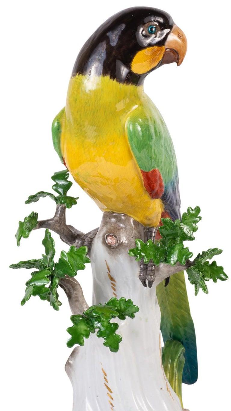 Pair of 19th Century Meissen Porcelain Parrots For Sale 1