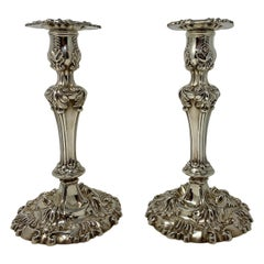 """Pair of Antique Sterling Silver, """"Shreve, Crump & Low"""", circa 1890-1900"""