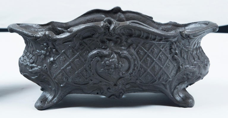 Belle Époque Pair of Cast Iron Footed Planters, France, circa 1900 For Sale