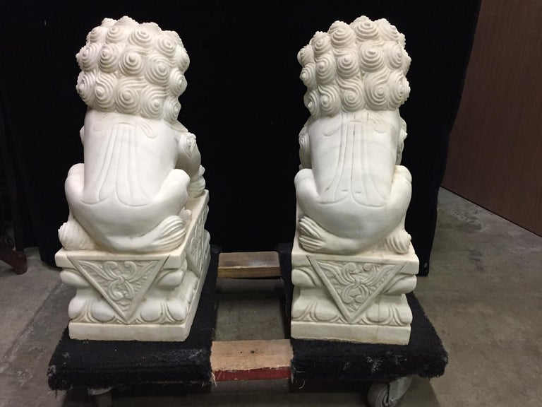 20th Century Pair Chinese Carved White Marble Fu Dogs For Sale