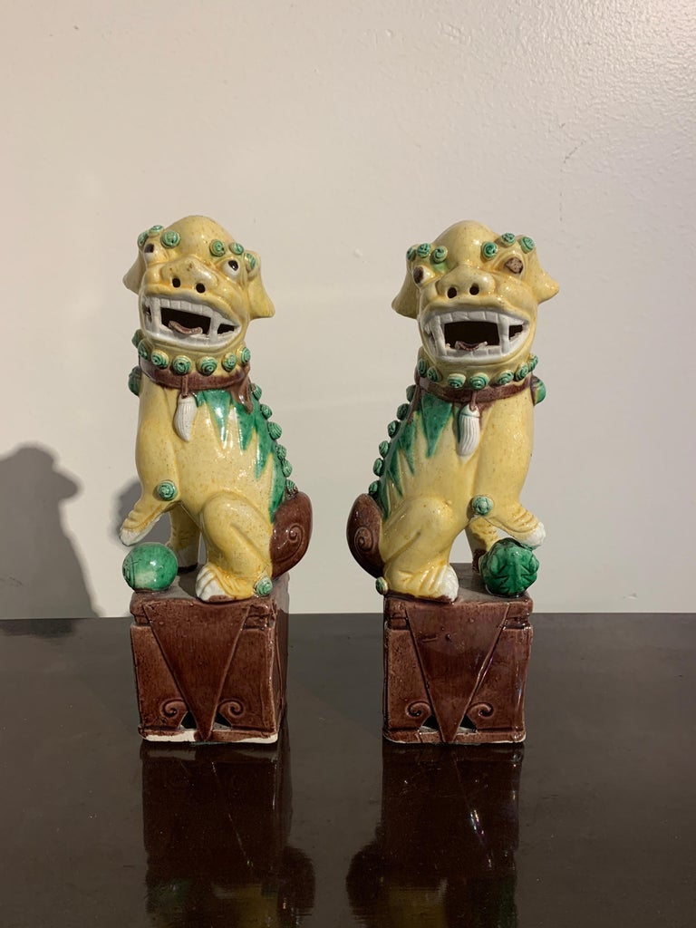 Pair of Chinese Yellow Glazed Foo Dogs, Republic Period, Early 20th Century 1