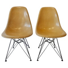 Pair of Eames Fiberglass DSR Chairs on Eiffel Tower Bases