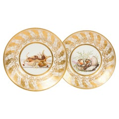 Pair of English Porcelain Dishes Hand Painted with Shells Made in England