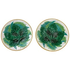 Pair George Jones Majolica Leaf and Ferns Plates White Ground, English, ca. 1875