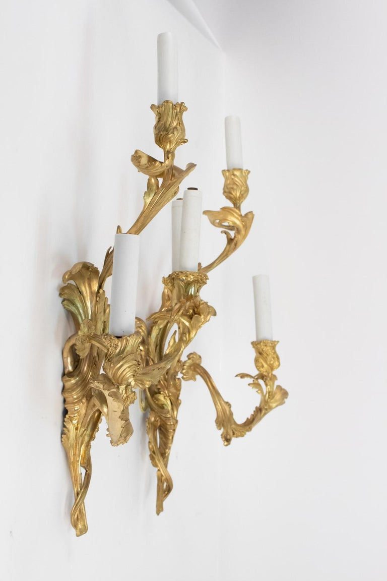 Pair of Gilt Bronze Sconces from the 19th Century in Louis XV Style For Sale 6