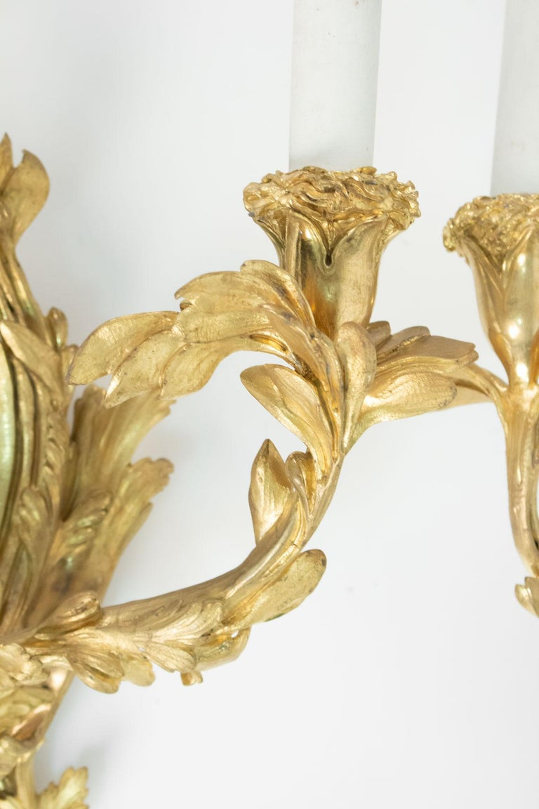 Pair of Gilt Bronze Sconces from the 19th Century in Louis XV Style For Sale 2