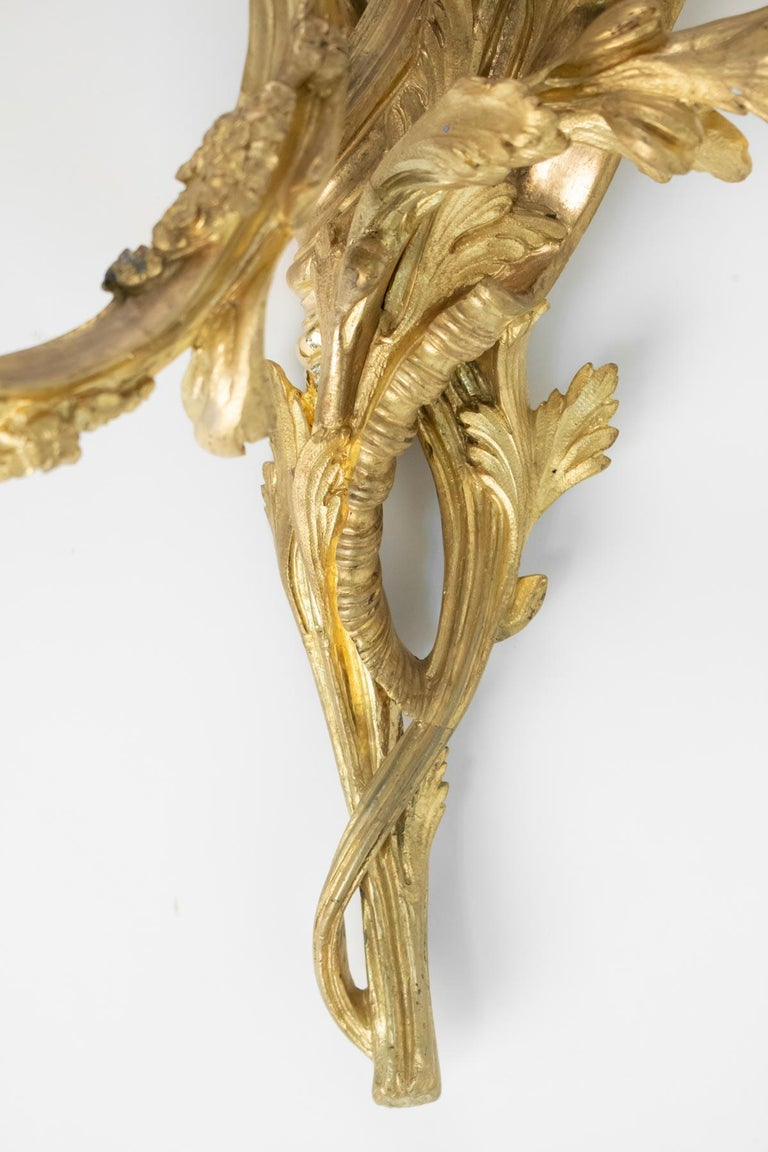 Pair of Gilt Bronze Sconces from the 19th Century in Louis XV Style For Sale 4