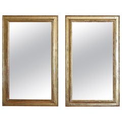 Pair of Italian Neoclassic Silver Gilt Vertically Shaped Mirrors