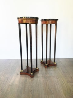 Pair of Italian Rosewood and Marble Pedestals or Plant Stands